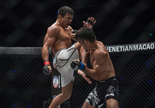 Don't Blink When These Knockout Artists Enter The Cage