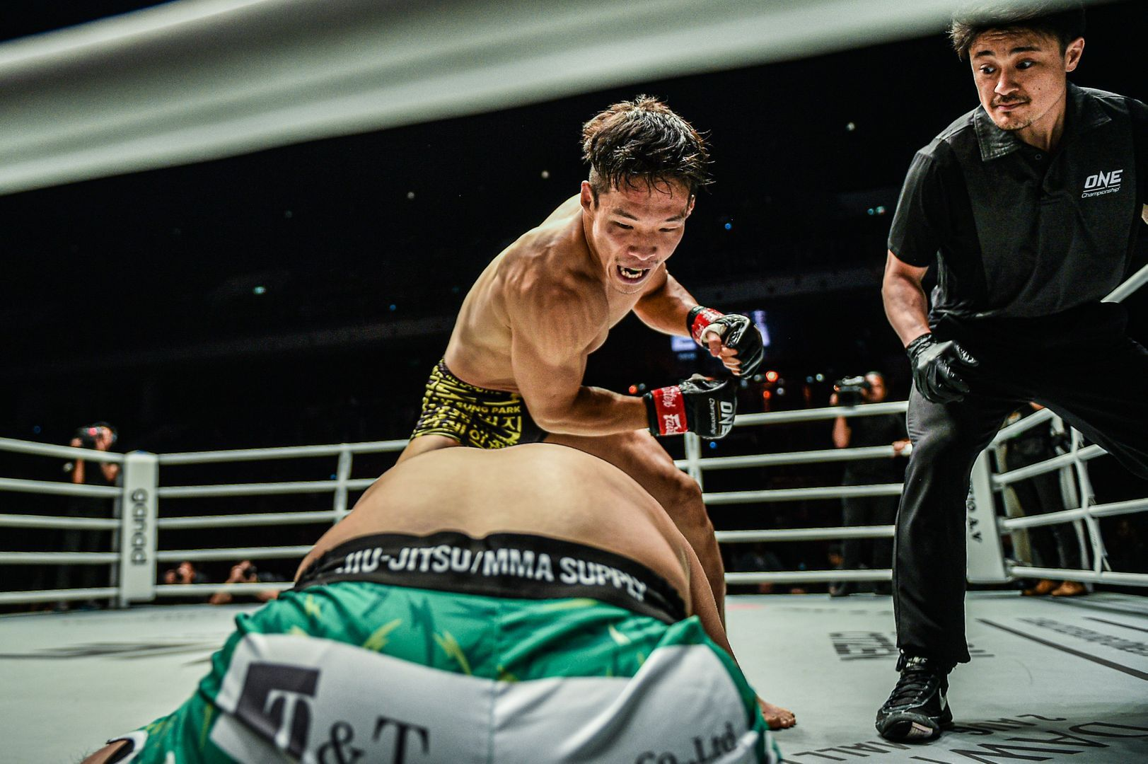 South Korean MMA fighter Dae Sung Park charges forward with ground-and-pound