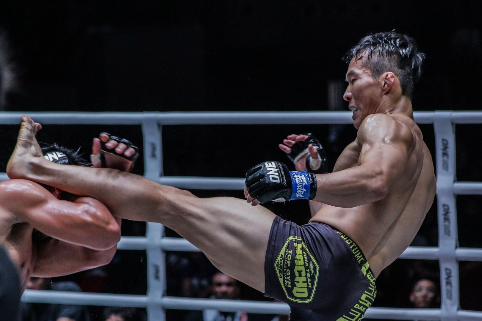 """Crazy Dog"" Dae Sung Park defeats Honorio ""The Rock"" Banario by unanimous decision at ONE: DAWN OF HEROES"