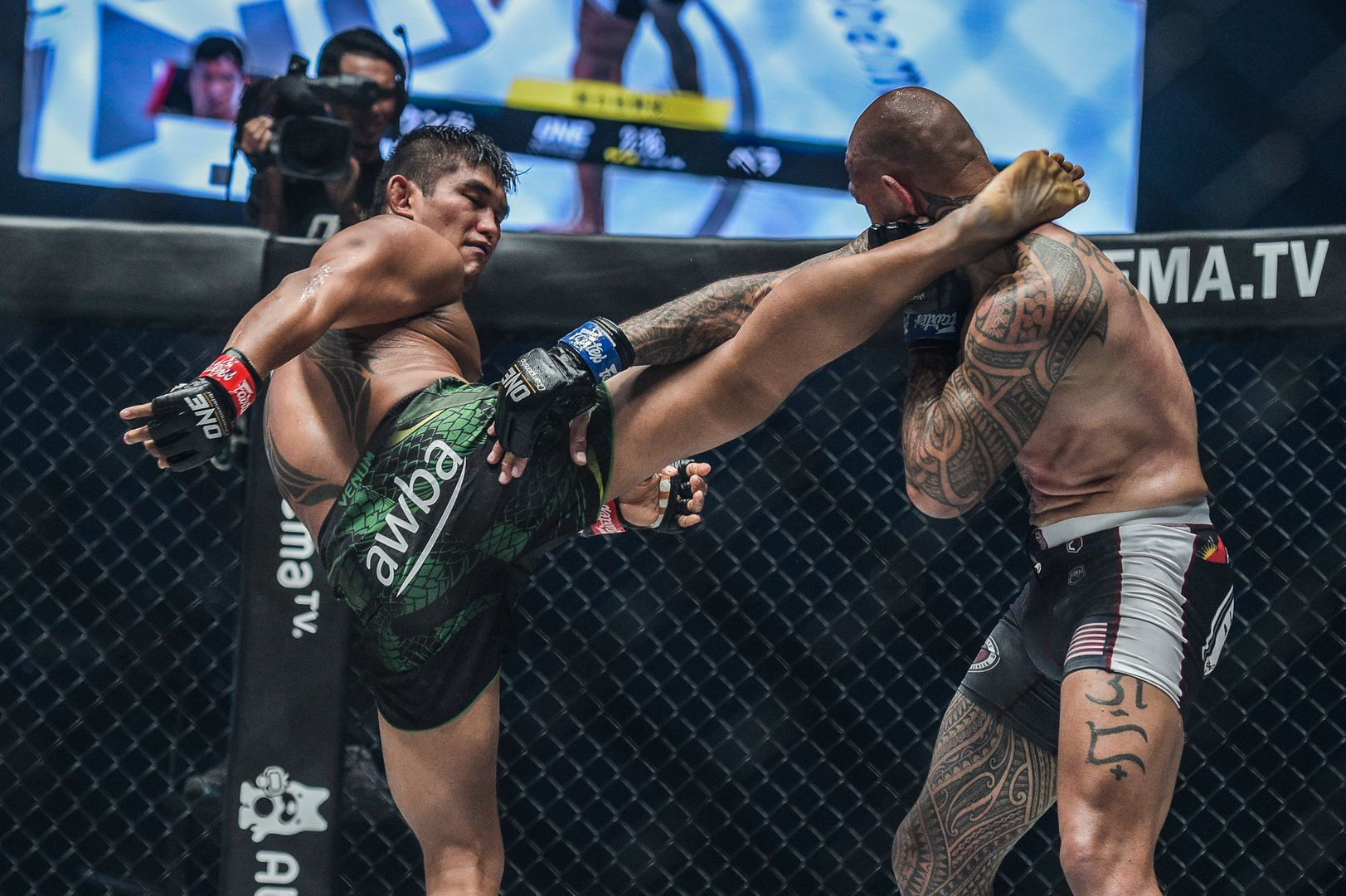Aung La N Sang kicks Brandon Vera at ONE CENTURY PART II