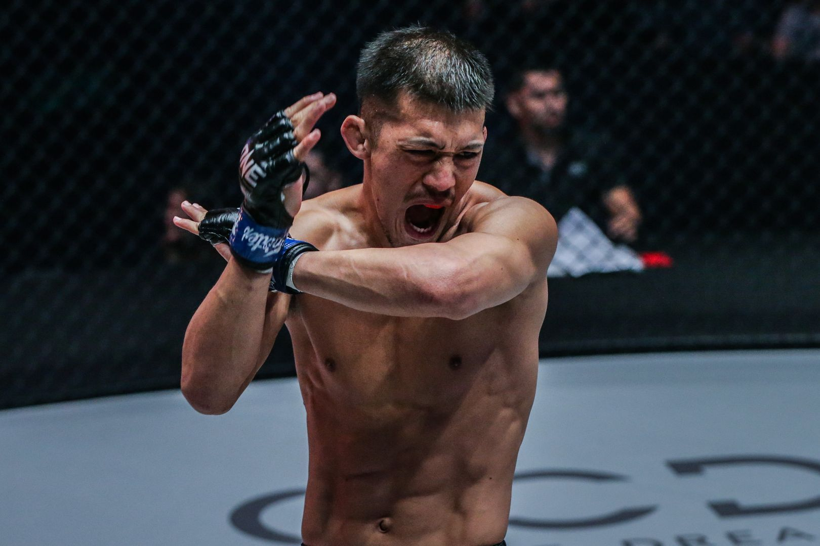 Shooto Bantamweight World Champion Shoko Sato celebrates his big win in Manila